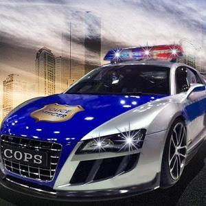 Police Vs Felon icon