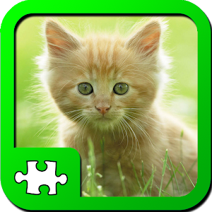 Puzzles: Kittens icon