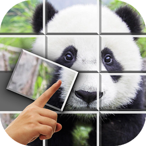 Pop Puzzle - Fun Jigsaw Puzzle icon
