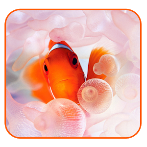 Fantastic Aquarium LW icon