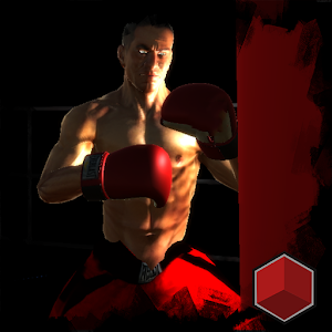 Punch 3D Boxing:Fighting icon