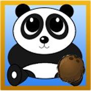 Coco Panda icon