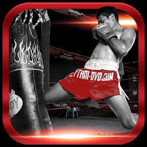 Muay Thai Training & Technique icon