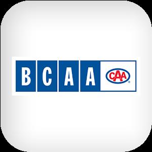 BCAA icon