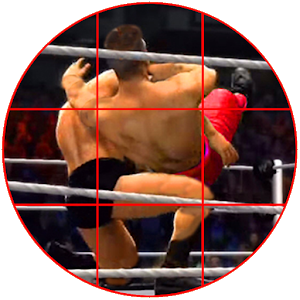 Wrestling Flash Punch: Trivia icon