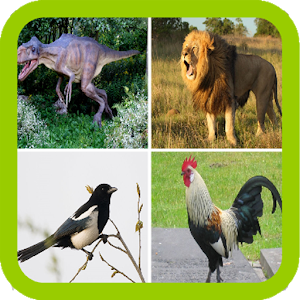 Funny Animal sounds icon