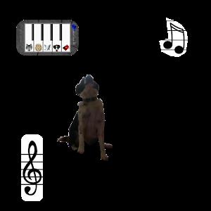 Animal Piano icon