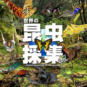 世界の昆虫採集ライト版 icon