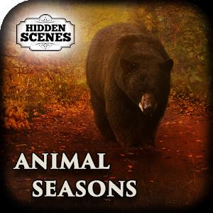 Hidden Scenes - Animal Seasons icon