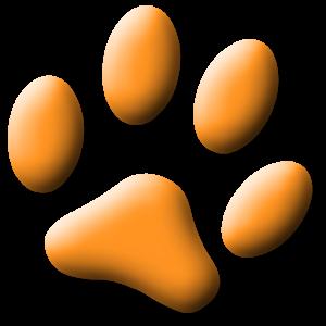 Cat Games Free icon