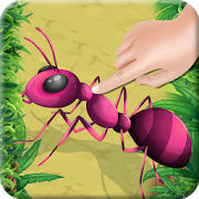 Ant Insect Smasher icon
