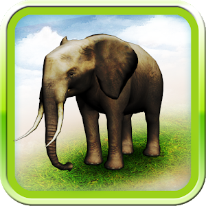 REAL ANIMALS HD icon