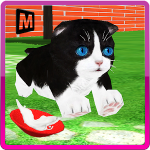 Crazy Pet Cat Madness 3D icon