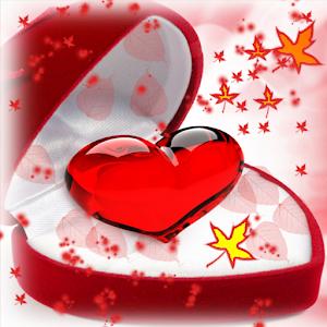 Valentine Diy Photo HD icon