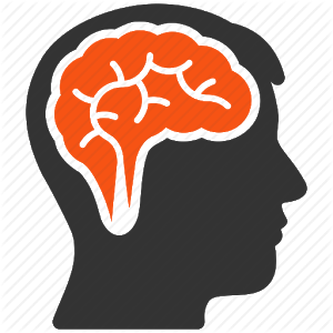 Brain Exercise icon