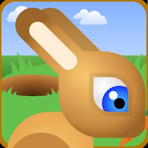 Bunny Rabbit Jump Run Race icon