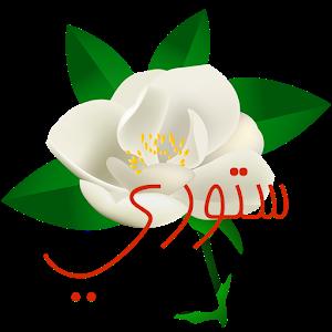 ستوري icon