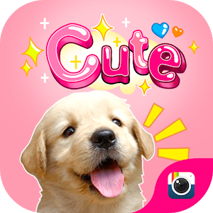 (FREE) Z CAMERA CUTE STICKER icon