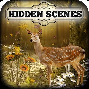 Hidden Scenes - Autumn Harvest icon