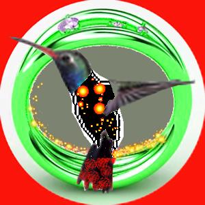 ISpy Detective icon