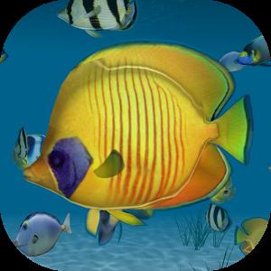 Ocean Tropical 3D HD LWP icon