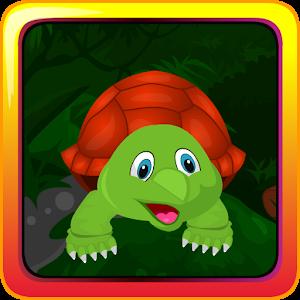 Tortoise Box Escape icon