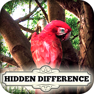 Find the Differences Life Tree icon
