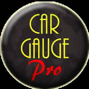 Car Gauge Pro (OBD2 + Enhance) - AppRecs