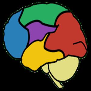 Hello Brain icon