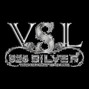 VSL 925 Silver icon