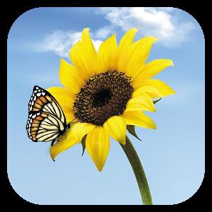 Butterfly Jigsaw icon