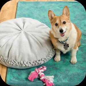 Dog Room Design icon