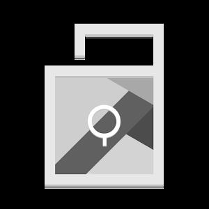 LockIt Pro icon