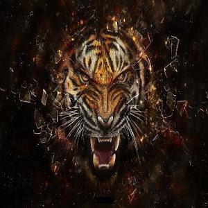 wild cats icon
