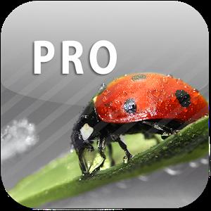 ColorUp Pro - Photo Editor icon