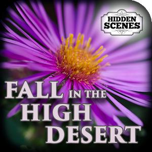Hidden Scenes High Desert Fall icon