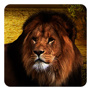 Lions Live Wallpaper icon