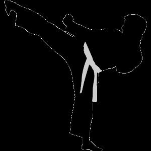 Kyokushin-Kata icon
