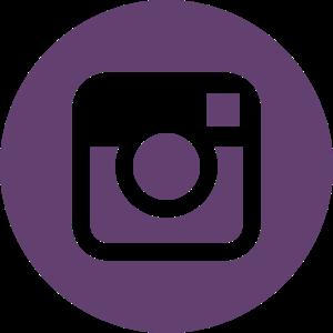 Instanaliz.ml - Instagram icon