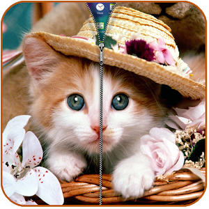 Pretty Kitty Screen Lock icon