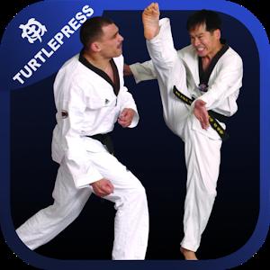 Taekwondo Skills and Drills icon