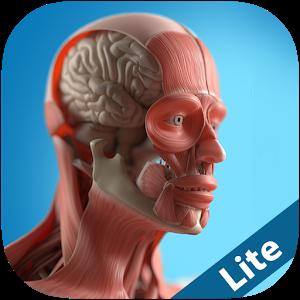 Anatomy Game Anatomicus Lite icon