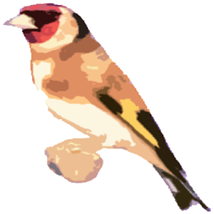 Free Singing goldfinches icon