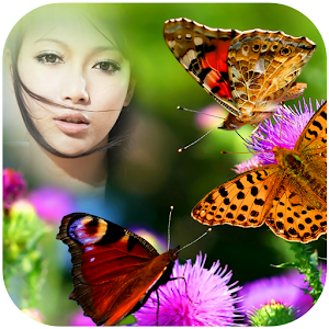 Real Butterfly Photo frames icon