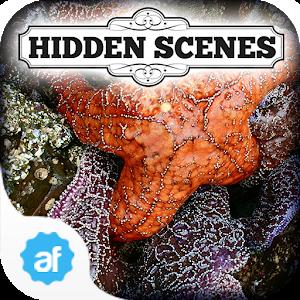 Hidden Scenes Secret Tidepool icon