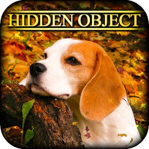 Hidden Object - Autumn Colors icon