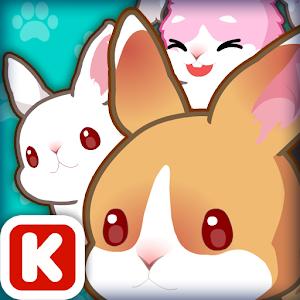 Animal Judy: Rabbit care icon