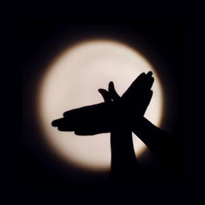 Shadow Play icon