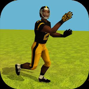 Football Simulator Rampage 3D icon