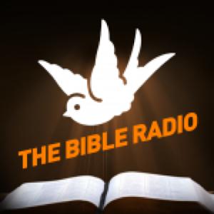 The Bible Radio icon